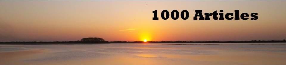 1000 Articles